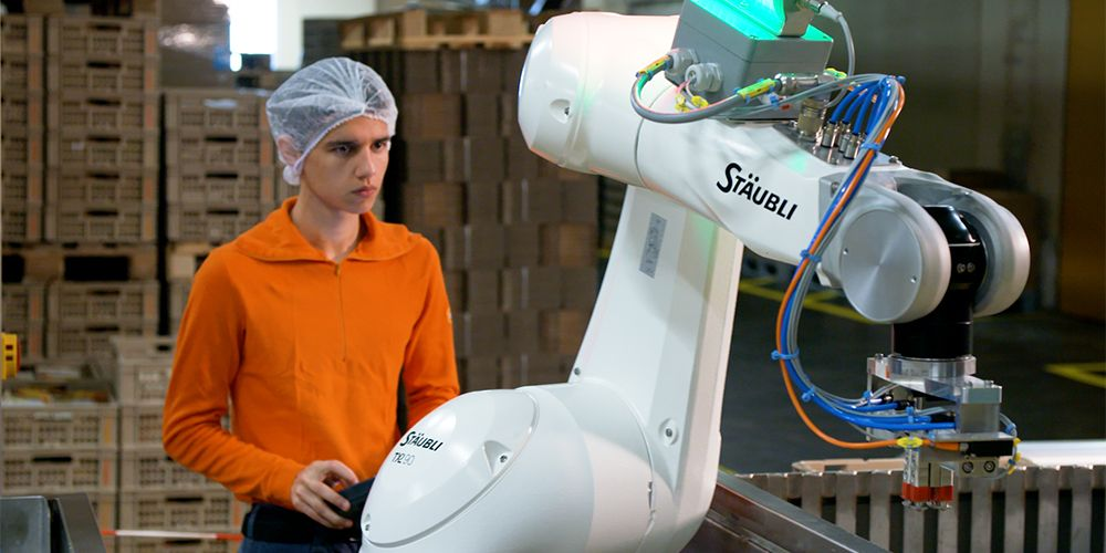 TX2-90 industrial robot with safety functions